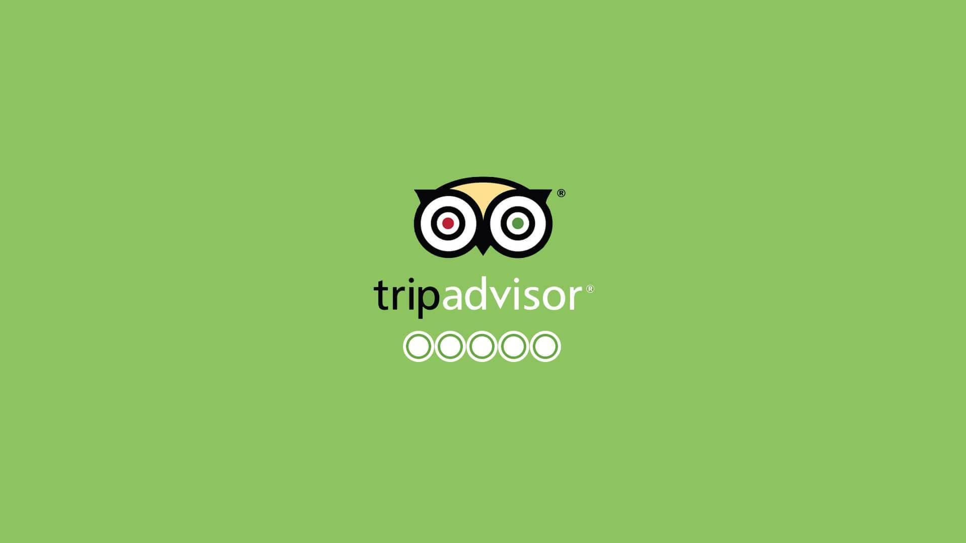 trip-advisor-wp-1920×1080