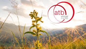 atb-virtual-twitter-anto_copyright_Oesterreich-Werbung_Michael-Stabentheiner
